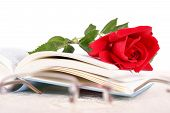 picture of poetry  - Open book and red rose on pages of book on white background with glasses in front of it romantic look poetry concept - JPG