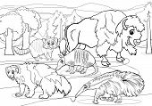 stock photo of wolverine  - Black and White Cartoon Illustrations of Funny American Mammals Animals Characters Group for Coloring Book - JPG