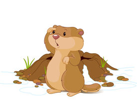 picture of groundhog  - Illustration of groundhog near bunk looks into the distance - JPG