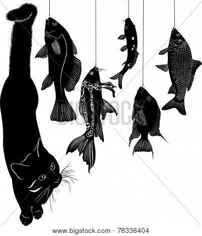pet cat and a lot of fish vector