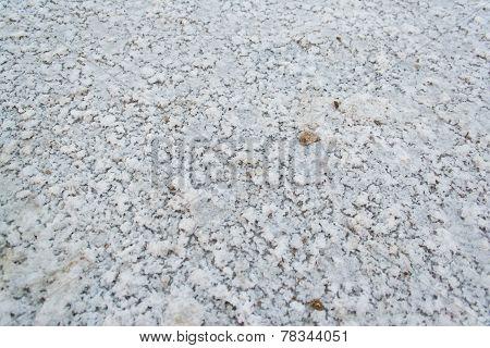 Salt On Earth