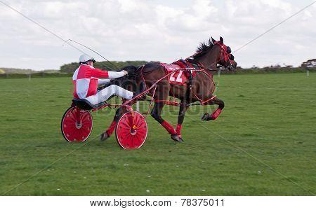 Trotting Racing