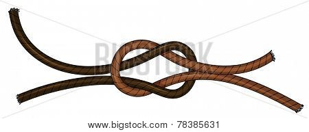 Illustration of a close up knot