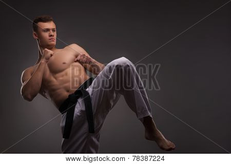 Handsome karate enthusiast