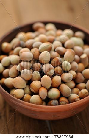 Hazel Nuts In Clay Bowl