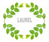 pic of laurel  - Laurel wreath with space for your text - JPG