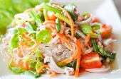 image of glass noodles  - Thai salad with carrot tomato glass noodle celery and pork - JPG