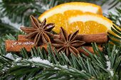 stock photo of christmas spices  - Christmas spices cinnamon and star anise on the background christmas tree twigs - JPG