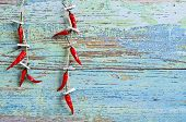 image of cayenne pepper  - The background of the old painted boards and pods of red hot pepper hanging on the rope - JPG
