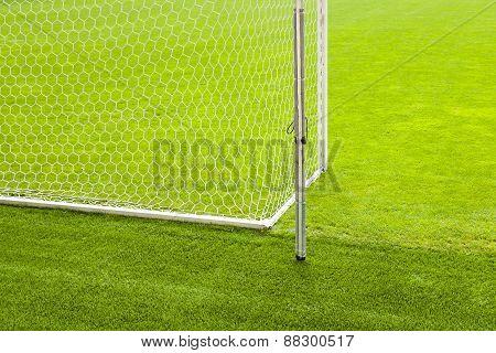 Soccer's field.