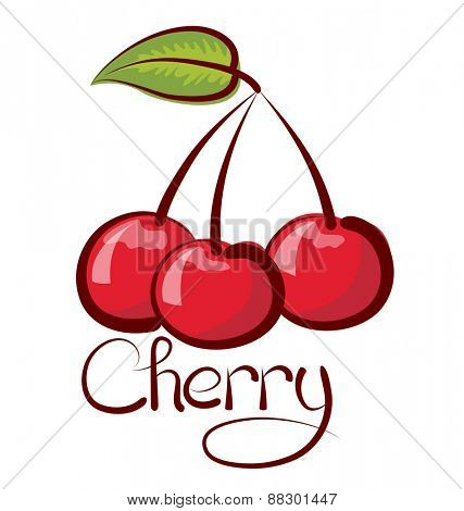 vector cherry with calligraphic inscription