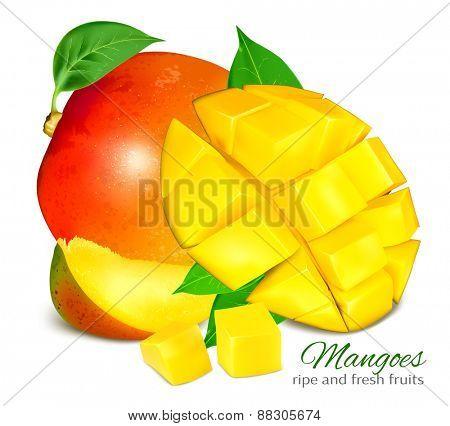 Ripe fresh mangoes. Vector illustration