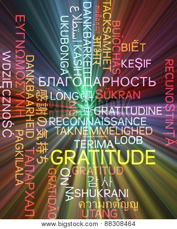 Background concept wordcloud multilanguage international many language illustration of gratitude glowing light