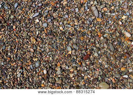 Wet Beach Pebble