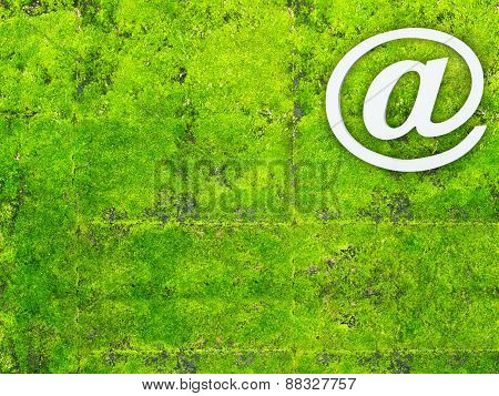 Email Sign Or Att Sign On Green Moss Plant Background