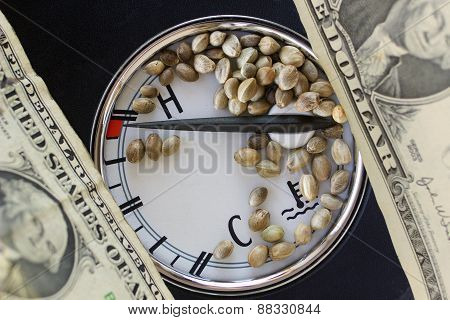 Auto Thermometer Dollar Banknotes And Hemp Seeds