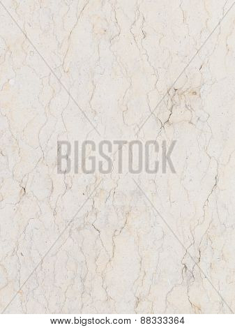 Rare Variety Of White Marble