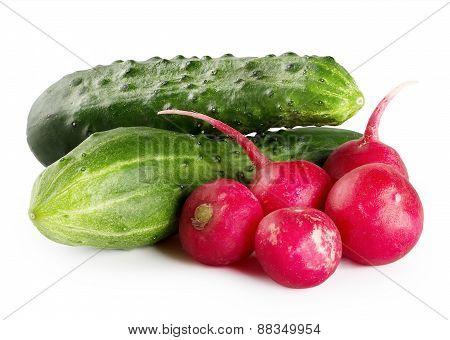 Ripe green cucumbers and radishes