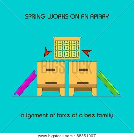 Alignment Of Force Of A Bee Family (spring Work)