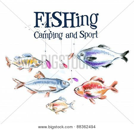 fishing. fresh fish on a white background