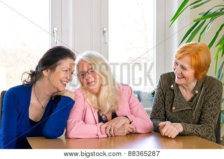 Happy Adult Female Friends Sitting At Dining Table
