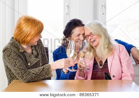 Happy Women Friends Having Wine At The Table