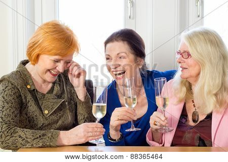 Happy Adult Friends Relaxing With Glasses Of Wine