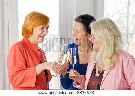 Happy Adult Women Friends Tossing Glasses Of Wine