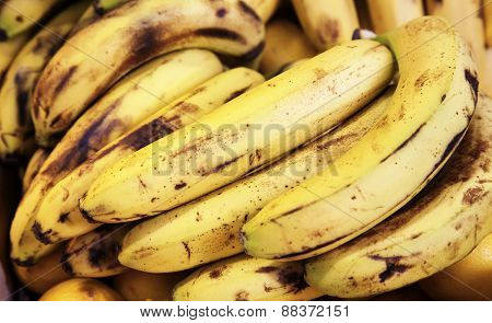 bunch of ripe organic bananas at market stall