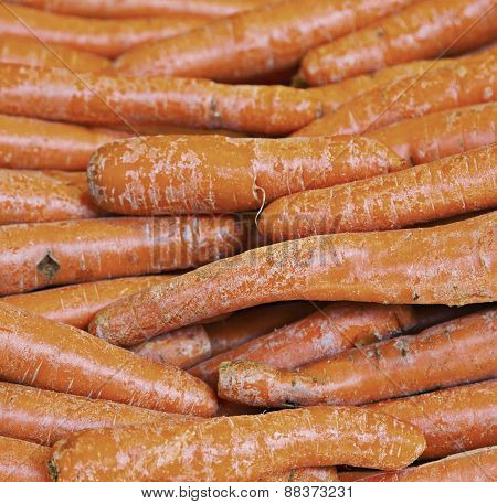 real organic carrots at stall