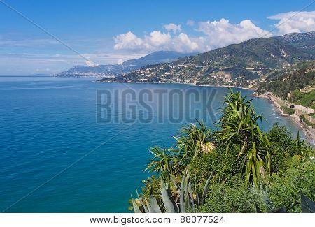 Coast Near Ventimiglia