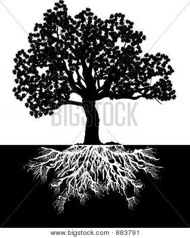 Tree_Bw