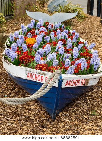 Whitby Anchor Bed Floral Display In Rowing Boat