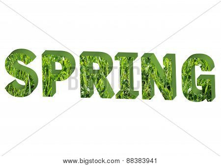 Letter Spring With Herb Pattern