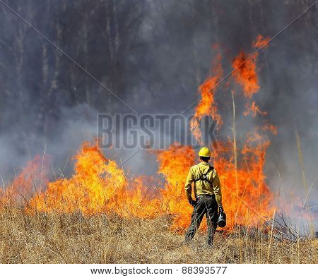 Prescribed Prairie Burn