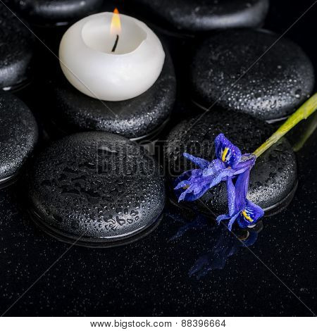 Beautiful Spa Concept Of Blooming Iris Flower, Candle And Black Zen Stones On Water, Closeup