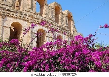 Tunisia amphitheater