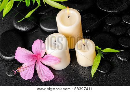 Beautiful Spa Concept Of Pink Hibiscus Flower, Twig Bamboo And White Candles On Zen Basalt Stones Wi