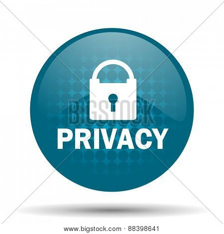 privacy blue glossy web icon