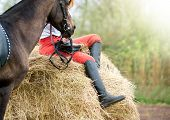 stock photo of breed horse  - The horse and the rider detail closeup - JPG