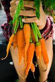 foto of carrot  - Bunch of fresh organic carrots  - JPG