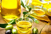 pic of olive trees  - Olive Oil - JPG
