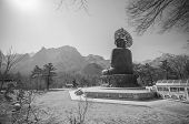 image of seoraksan  - Buddha in the Sinheungsa Temple at Seoraksan National Park South Korea - JPG