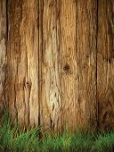picture of wood  - Spring grass background - JPG