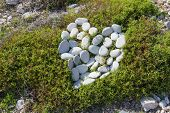foto of pumice-stone  - Stones heart on the grass - JPG