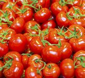 foto of stall  - real red organic tomatoes at market stall - JPG