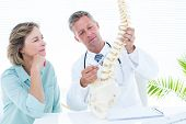 picture of spine  - Doctor pointing anatomical spine in medical office - JPG