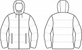 pic of down jacket  - Vector illustration of winter quilted down jacket - JPG