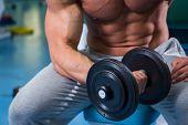 image of strength  - Strength training with dumbbells - JPG