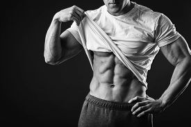 picture of muscle  - Muscular man bodybuilder - JPG
